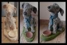 Hund_Lucky_1